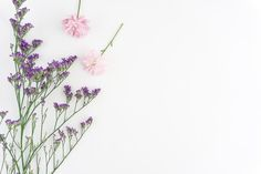 Decorative background with purple and pink flowers Free Photo