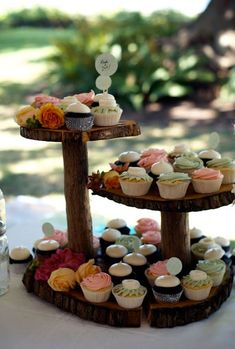 Rustic Wooden Stand Featuring Array of Colorful Cupcakes