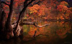 Jaewoon U - Colori caldi e riflessi sull'acqua: paesaggi surreali in Corea del Sud