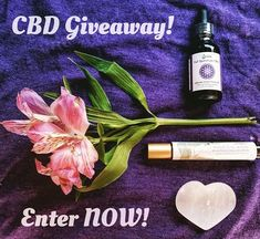 CBD GIVEAWAY! It's a hemp hemp hooray giveaway with hemp for the skin and hemp for within!  We've partnered with our clean skincare friends @treatyourselfinc to gift one lucky winner with a CBD-rich Magic Eye Wand AND our organic hemp flower spagyric 500mg CBD!  Head to our last post NOW for your chance to win big!  Love Your Body! Love Everybody! www.sarvaasuperfood.com    #sarvaasuperfood #loveyourbodyloveeverybody #loveyourbody #superfoods #superfood #wellness #organic #cbd #hemp #cbdoil…