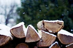 Firewood was always plentiful from fallen trees... and free.  All you needed was a little sweat equity, and your house was warm all winter.  My mom kept our woodstove stoked, and our house was always so toasty that the insides of the window panes sweated!