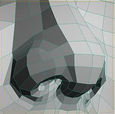 Notice how a few polygons from the face are enough to build the nose.