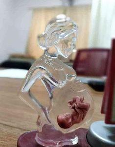 Si las mujeres tuvieran el vientre de cristal, verían el milagro de la vida que llevan dentro...♥