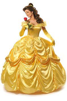 Princess Belle | http://www.ebay.com/itm/Disney-Princess-Belle-custom-designed-wig-/131054011710?pt=US_Costume_Accessorieshash=item1e836d853e