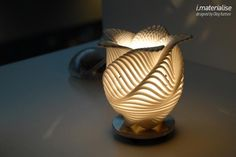 Flower lamp  made up of parametric equation by Oleg Kurstev
