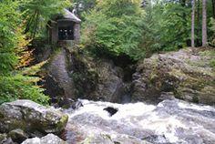 Favourite woodland escape! The Hemitage, near Dunkeld. Perthshire.