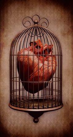 Arte Lowrider, Anatomical Heart, Human Heart, Anatomy Art, Arte Pop, Heart Images, Pics Art, Love Tattoos, Tatoos