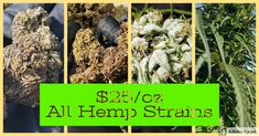 CBD Hemp Flower Sale going on Right now.  Only $25 an ounce. Best Farm Dogs, Free Facebook Likes, Tiger Images, Unicorn Books, Tv Set Design, Social Media Impact, Hollywood Couples, Best Funny Videos, Easy Food To Make