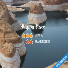 A Beautiful and Short Essential Oil Frankincense Guide For frankincense essential oil diffuser Frankincense Essential Oil, Essential Oil Diffuser Blends, Doterra Essential Oils, Young Living Oils, Young Living Essential Oils, Elixir Floral, Diffuser Recipes, Afternoon Nap, Mole Removal
