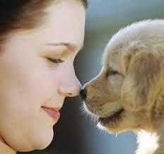 Resultado de imagen para perritos con corazones