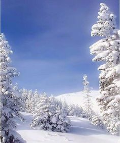 baby it's cold outside ~ Dreamy Nature