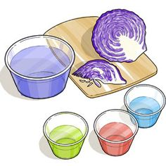 Cabbage Chemistry -- finding acids n bases - scientificamerican.com