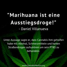 Wie war das nochmal mit Marihuana als Einstiegsdroge?