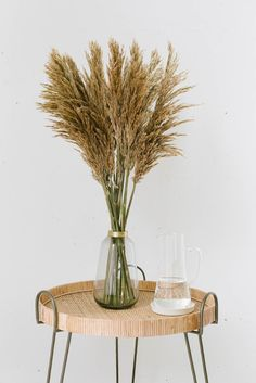 Pampagras natur getrocknet - Fräulein K. Sagt Ja Partyshop Nigella, Shops, Party, Boho, Decor, Gardens, Dried Flowers, Glass Vase, Decorating