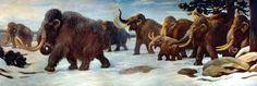 mammoth - Google Search