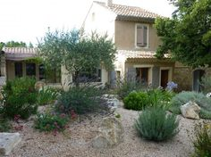 Jardin sec méditerranéen                                                                                                                                                                                 Plus