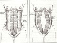 Ejercicios hipopresivos ,para recuperar la faja abdominal
