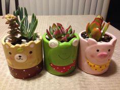 Cute pots fr daiso.