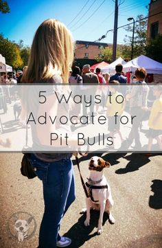 Five Ways to Advocate for Pit Bulls - lolathepitty.com #pitbullawarenessmonth