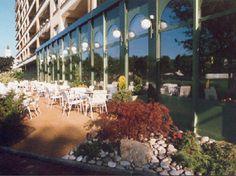Le Domino fribourg Restaurants, Plants, Restaurant, Planters, Plant, Planting