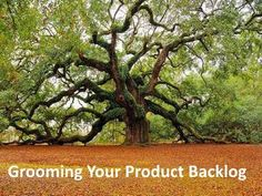 Grooming your Product Backlog by Jason Little, via Slideshare