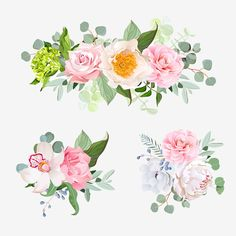 Stylish various flowers bouquets vector design set Gratis PNG y PSD Green Carnation, Green Hydrangea, Hydrangeas, Anemone Flower, Leaf Flowers, Pink Flowers, Vector Flowers, Flower Clipart, Color Vector