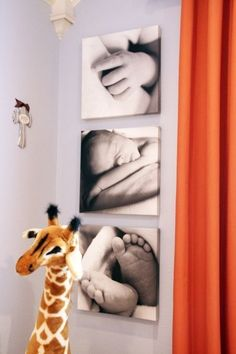 Murals Nursery, which make the nursery walls stand out - Kinderzimmer – Babyzimmer – Jugendzimmer gestalten - Baby Room Ideas Baby Boy Rooms, Baby Boy Nurseries, Baby Bedroom, Baby Room Ideas For Boys, Gray Nurseries, Modern Nurseries, Bedroom Black, Kids Bedroom, Newborn Pictures