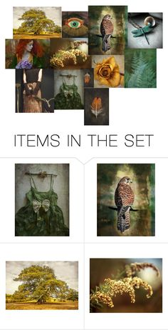 """SOME of my Favorite Things"" by dorataya ❤ liked on Polyvore featuring art, rustic, Fall, November, dorataya and inspiredandslightlyobsessed"