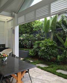 Brisbane& Branat Design team filled a narrow space along this fenceline wit. - Brisbane& Branat Design team filled a narrow space along this fenceline with a luscious palet - Tropical Garden Design, Small Backyard Design, Small Backyard Patio, Backyard Patio Designs, Tropical Landscaping, Landscaping Ideas, Small Tropical Gardens, Backyard Kitchen, Tropical Style