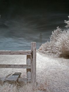 Field by Nick Haeffner