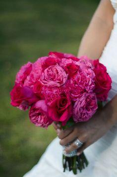 clavel y rosa