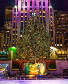 New york im winter weihnachtsbaum