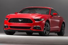 mustang images and pictures