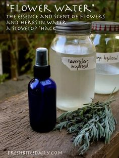 Homemade Hydrosol: A Stove-Top Hack