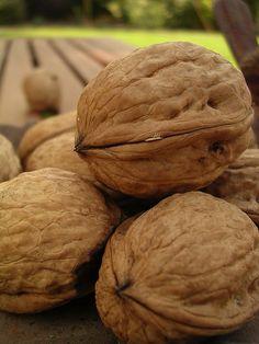 #Walnuts http://blackwalnutcracker.com/
