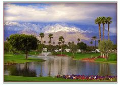 Outdoor Resort, Palm Springs (Palm Springs, CA) Camping Spots, Rv Camping, Palm Springs Florida, Best Rv Parks, Rv Campgrounds, Rv Sites, 50 States, Spring Home, Coachella