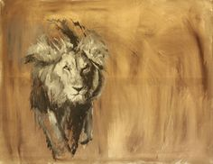 Lion by Calla Bedow