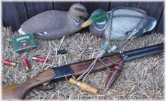 All about hunting methods, dogs, weapons, wildlife and more! Hunting guide about how to hunt deer, elk, duck, turkey, pheasant, hog hunting...