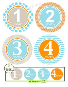 IRON ONS  12 Monthly iron on heat transfers  for Baby by MyLilTees, $9.95