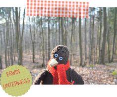 Erwin im Wald.