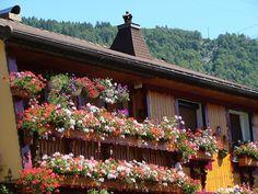 Flower balconies