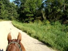 Kickapoo Valley Horse Trail Riding