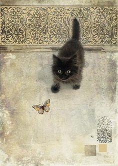 Le chaton noir et le papillon.
