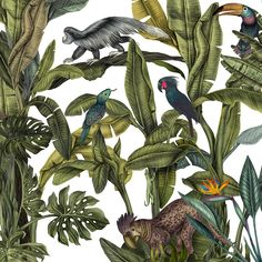 Magical Jungle for the tiles of Casa Cook Hotel. on Behance