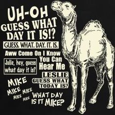 guess what day it is camel | Happy Humpday Camel T-Shirt...our day. LOL