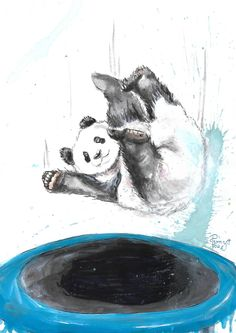 PANDA 🐼 💙 . . . . #pennyfou #artoftheday #instaart #instagood #instaartist #artist #arte #artistic #artsy #dailyart #art #draw #drawing #paint #painting #worldofartists #sketch #sketchbook #artwork #myart #watercolor #watercolorpainting #color #colors #artcollective #beautiful #cute #panda #animal #animals