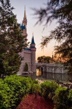 Top 10 Unique Cinderella Castle Photo Spots: check them out at Disney Tourist Blog.