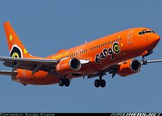 Boeing 737-8BG aircraft picture