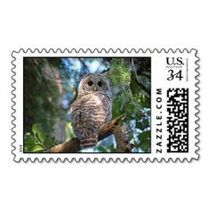 SOLD! Barred Owl Postage Stamps by FunNaturePhotography on Zazzle. #owls #stamps #postage