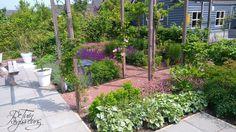 Terrassen aansluitend op vaste planten borders in gezinstuin met meer beleving te Alphen aan den Rijn. Tuinontwerp: De Tuinregisseurs Plants, Porches, Plant, Planets